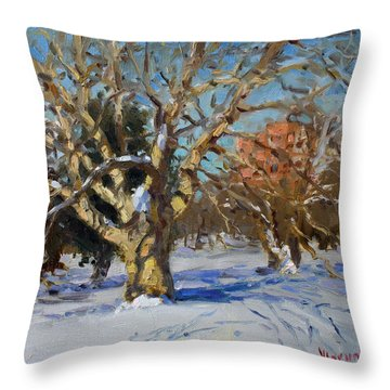 Snow In Goat Island Park  Throw Pillow