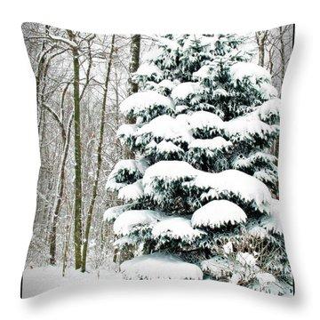Snow In Ohio Throw Pillow by Joan  Minchak
