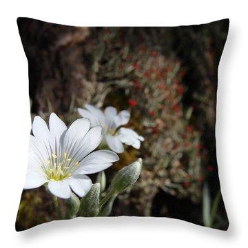 Snow In Summer Throw Pillow