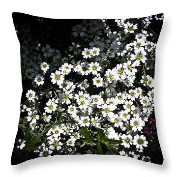 Throw Pillow featuring the photograph Snow In Summer by Joann Copeland-Paul