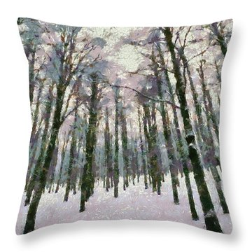 Snow In The Forest Throw Pillow by George Atsametakis