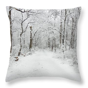 Snow In The Park Throw Pillow by Raymond Salani III