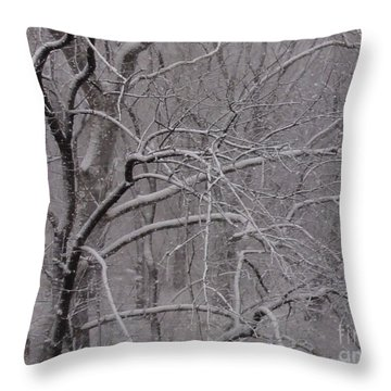 Snow In The Trees At Bulls Island Throw Pillow