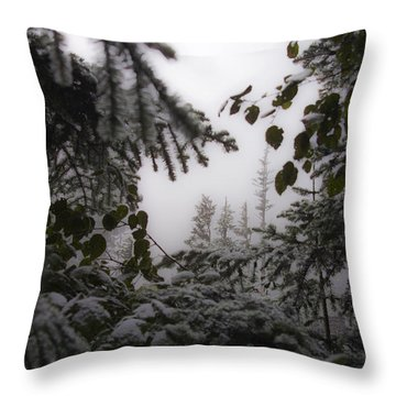 Snow In Trees At Narada Falls Throw Pillow