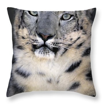 Throw Pillow featuring the photograph Snow Leopard Portrait Endangered Species Wildlife Rescue by Dave Welling