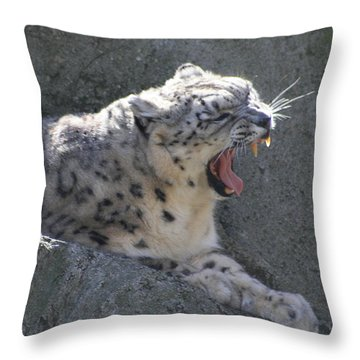 Snow Leopard Yawn Throw Pillow by Neal Eslinger