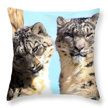 Snow Leopard's Throw Pillow