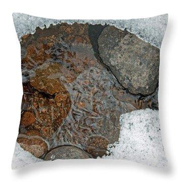 Snow Melt 3 Throw Pillow