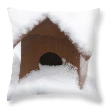 Snow On Bird House Throw Pillow by Birgit Tyrrell