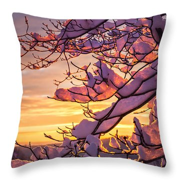 Snow On Branches Throw Pillow by Steven Llorca