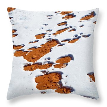 Snow On Dunes Throw Pillow