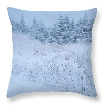 Snow On New Years Eve Throw Pillow
