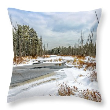 Snow On Roberts Branch Throw Pillow