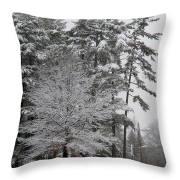 Snow On Trees At The Redstone Campus Uvm Throw Pillow