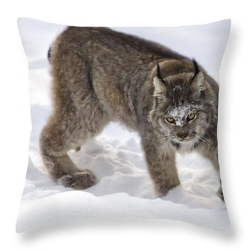 Snow-shovelling Lynx Throw Pillow