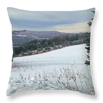Throw Pillow featuring the photograph Snow Song by Christian Mattison
