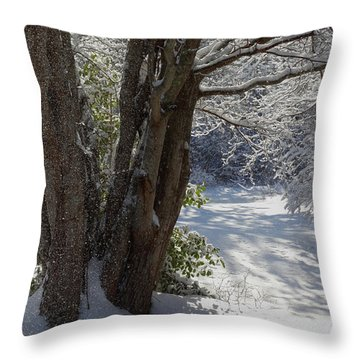 Snow Sparkles Throw Pillow by Dianne Cowen