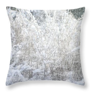 Snow Textures Throw Pillow by Suzanne Powers
