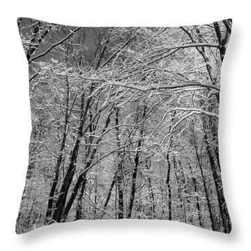 Throw Pillow featuring the photograph Snow Trees On The Trail by John S