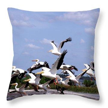 Snowbirds Heading South Throw Pillow