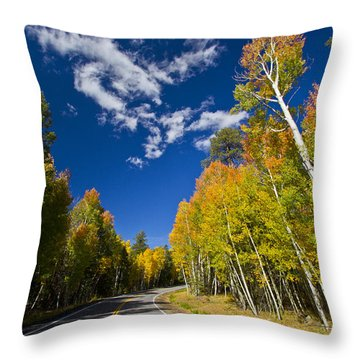 Snowbowl Beckons Throw Pillow by Tom Kelly