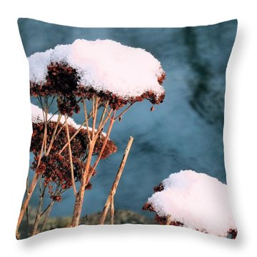 Throw Pillow featuring the photograph Snowcapped by Janice Drew