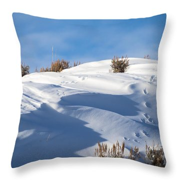 Snowdrifts Throw Pillow