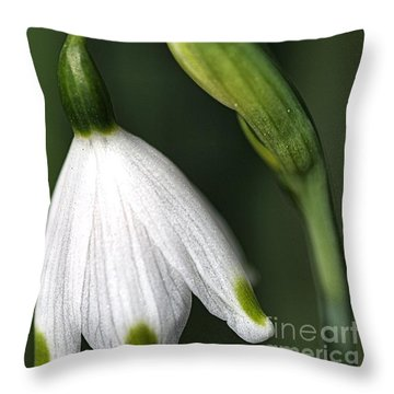 Throw Pillow featuring the photograph Snowdrop by Joy Watson