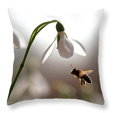 Snowdrops And The Bee Throw Pillow by Torbjorn Swenelius