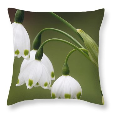 Snowdrops Throw Pillow by Jaki Miller