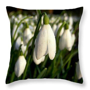Snowdrops Throw Pillow by Nina Ficur Feenan