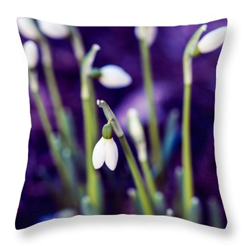 Snowdrops - One For All And All For One Throw Pillow