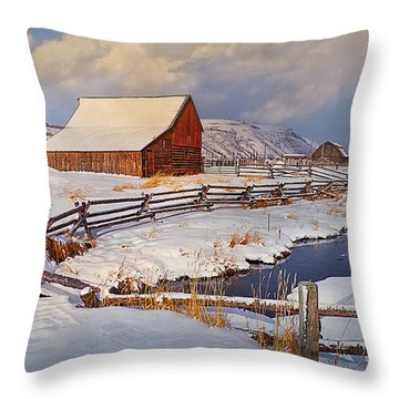 Throw Pillow featuring the photograph Snowed In by Priscilla Burgers