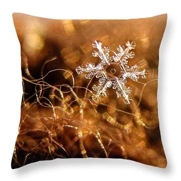 Snowflake On Brown Throw Pillow