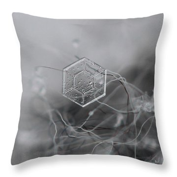 Snowflake Symmetry Throw Pillow