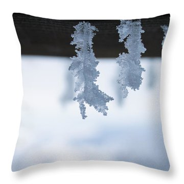 Snowflakes Close-up Throw Pillow