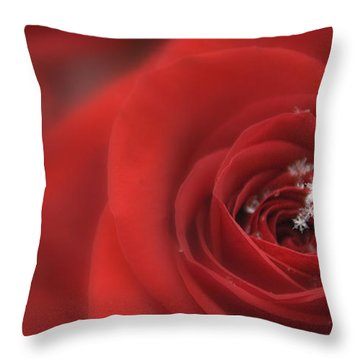 Snowflakes On A Rose Throw Pillow by Lori Grimmett