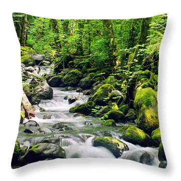 Snowmelt Throw Pillow