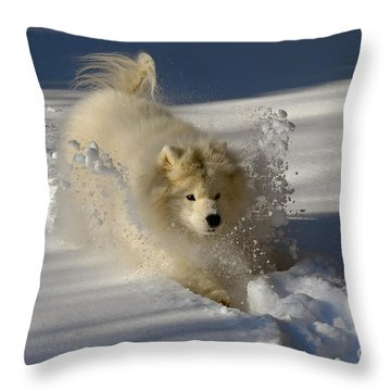 Snowplow Throw Pillow by Lois Bryan
