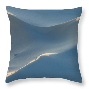 Snowscapes 1 Throw Pillow by E B Schmidt