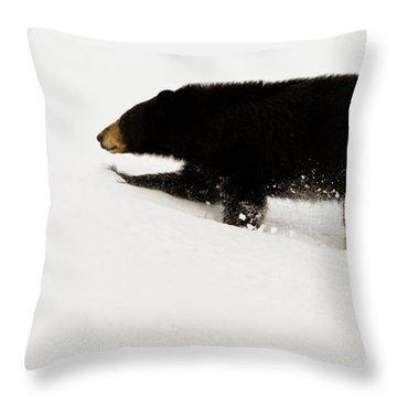 Snowy Bear Throw Pillow