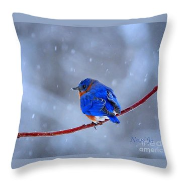 Snowy Bluebird Throw Pillow by Nava Thompson