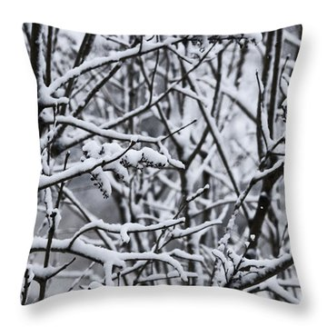 Snowy Branches Throw Pillow by Birgit Tyrrell