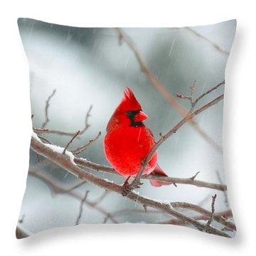 Snowy Cardinal Throw Pillow