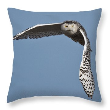 Snowy Throw Pillow by Wes and Dotty Weber