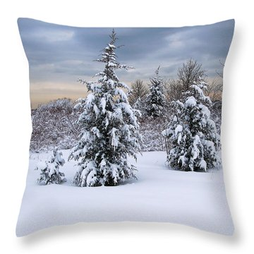 Snowy Dawn Throw Pillow by Deborah  Bowie