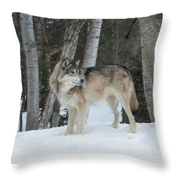 Snowy Day Trek Throw Pillow
