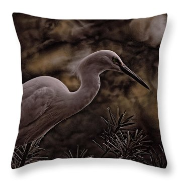 Throw Pillow featuring the photograph Snowy Egret 002 by Travis Burgess