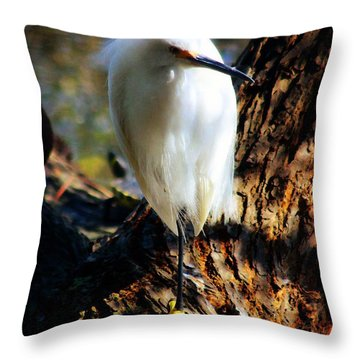 Snowy Egret 2 Throw Pillow by Timothy Bulone