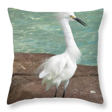 Snowy Egret Throw Pillow by DejaVu Designs